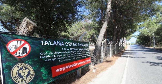 Buca Belediyesi'nden vatandaşlara uyarı: Talana ortak olmayın!