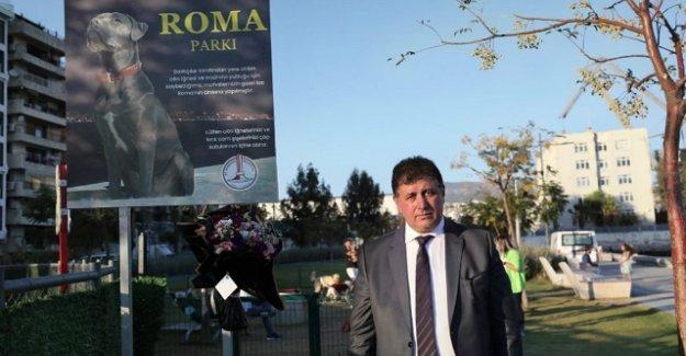 Can dostumuz Roma'nın adı Alaybey'de yaşayacak!