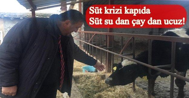 "CHP Milletvekili Gürer: ""Besicilikte zorda.."""