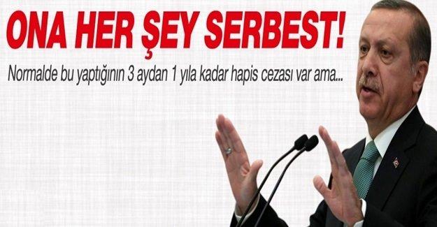 Erdoğan'a propaganda yasağı da mı yok?