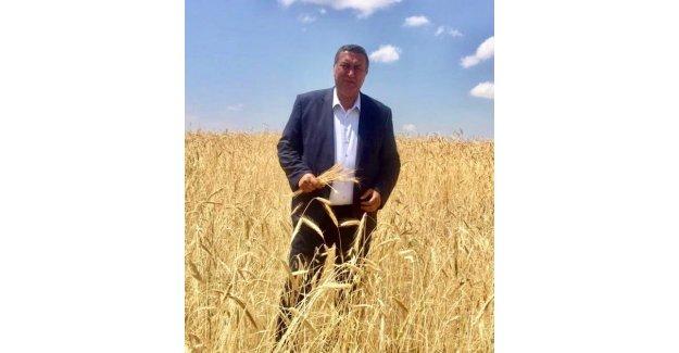 """Gürer: """"Buğdayda taban fiyat, girdi fiyatlarının artışına göre düşük kaldı"""""""