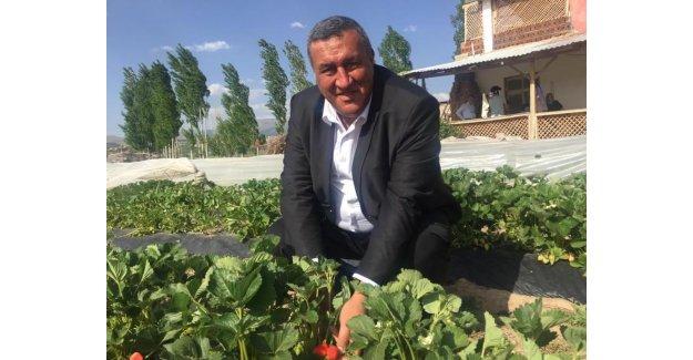 """Gürer: """"Çiftçiye destekleri hemen ödensin"""""""