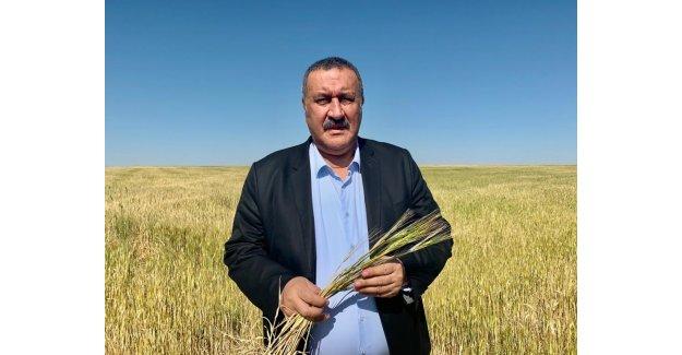 """Gürer: """"Hazine arazilerinin üretim yapan çiftçilere satışı için düzenleme yapılmalı"""""""