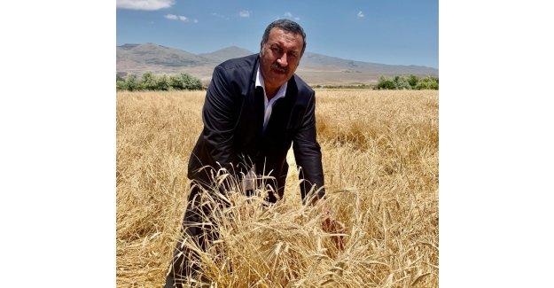 """Gürer: """"İthal buğdayı işleyip ihraç ederek tarımda sorunlar aşılamaz"""""""