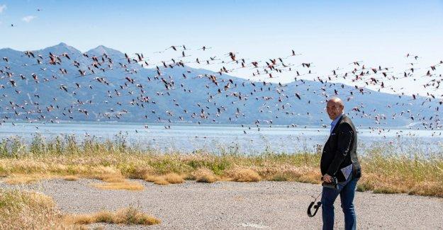 İzmir doğal yaşamla bütünleşecek