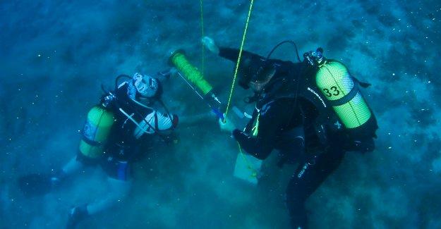 Kırmızı Mercanlar koruma altında