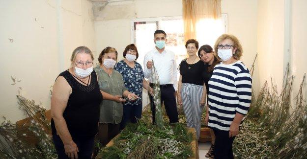 Menderes Belediyesi'nden Kadın Üreticilere Destek