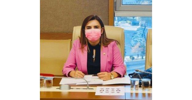 """TBMM Deprem Araştırma Komisyonu Üyesi Av. Sevda Erdan Kılıç: """"Bu Komisyon teknikten öte vicdani bir komisyon"""""""