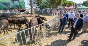 Büyükşehir Belediye Başkanı Soyer'in köylüye desteği sürüyor