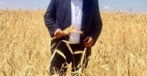 """Gürer: """"Buğdayda taban fiyat üreticinin yüzünü güldürmedi"""""""
