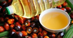 Palmiye yağının zararları neler? Kanserojen mi?