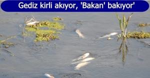CHP'li Sertel Gediz'de balık tutma sözünü hatırlattı