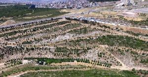 'En İyi Kentsel Tasarım' ödülü İzmir'in