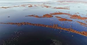 Gediz Deltası UNESCO Yolunda
