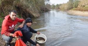 Gediz Nehri'nde su seviyesi düşünce elleriyle balık tuttular