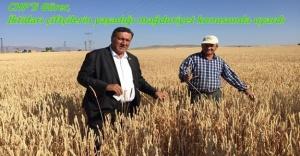 """Gürer: """"Çiftçilerin borçları ertelenip yeni destekler verilmezse, gıdaya erişimde sorun yaşanır"""""""