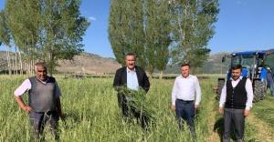 """Gürer: """"Farklı bölgelerdeki ekili alanlarda yine büyük zarar var"""""""