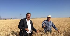 """Gürer: """"İktidar tarımda ithalatçı anlayıştan vazgeçmiyor"""""""