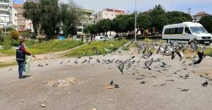 Karabağlar Belediyesi kuşları bile unutmuyor!