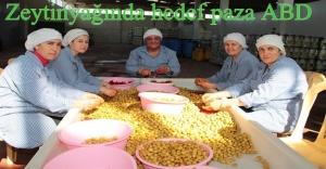 Türk zeytin ve zeytinyağını Amerikalılar çok sevdi