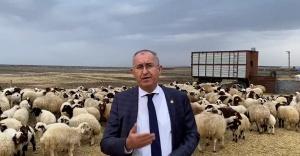 Ziraat Bankası hayvancılıkla ilgili proje başlattı Kars'ı dahil etmedi