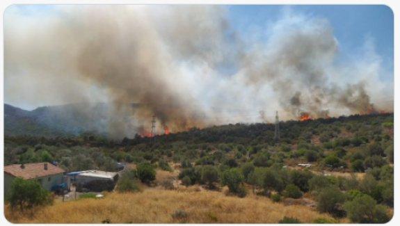 Urla - Balıklıova'da Yangın