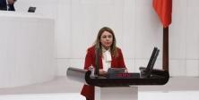 CHP DOĞA HAKLARI'NDAN ACİL EYLEM PLANI ÇAĞRISI