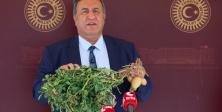 "Gürer: ""Patates tarlada 50 kuruş, markette 3 lira"""
