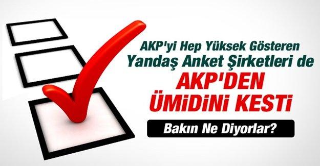 Yandaş Anketçilerde AKP'den Ümidi Kesti