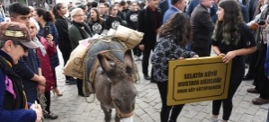 Aydın'da yeni kütüphanenin kitaplarını eşekle taşıdılar